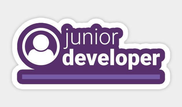 Junior Developer Là Gì? Điều Kiện Đạt Chuẩn Và Yêu Cầu Công Việc Của Junior Developer